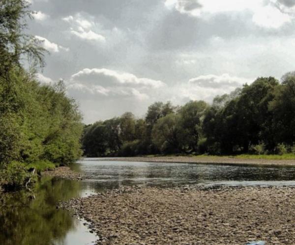 Cendrillon-riviere